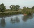 Il WWF sbarra la strada alla diga
