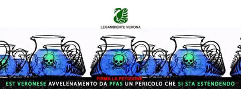 RAPPORTO DEL NOE SU MITENI E PFAS
