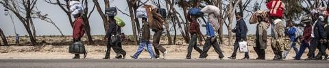 Clandestino, extracomunitario, migrante, profugo…