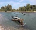 Rafting sul Fiume Adige al Parco di Pontoncello