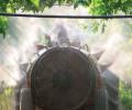 Veneto: pesticidi e prosecco